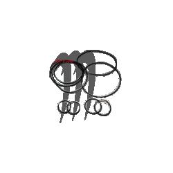 TBM RACING. Kit O-Ring pour Culasse TBM Kawasaki 750cc-800cc