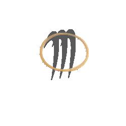 Ring seal, 951