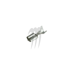 Cosse Femelle Term Marine