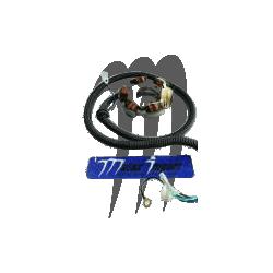Stator XL 1200 LTX /XLT 1200 /GP 1200 /GP 1200 R /XR 1800 (valves)