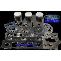WSM. USA . Kit Plunger Platinum, Yamaha, 1200 R 66V ( cote +0.50mm )
