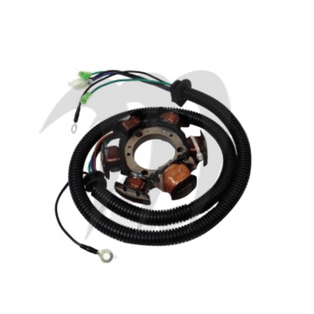 Complete Stator Assembly Amature Coil, 1200cc