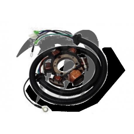 Stator assemble Yamaha GP/ XL/ SUV/ LS 200 /LX210