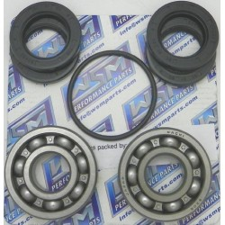 Kawasaki JS Turbine Bearing Kit