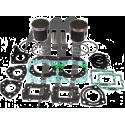 WSM USA . Kit Plunger Platinum, Kawasaki, SXR-800cc ( + 0.50mm )