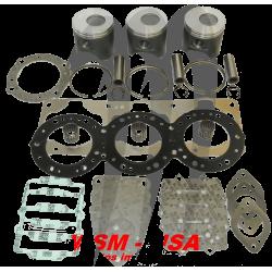 WSM USA . Kit Plunger Platinum, Kawasaki 1100cc DI ( + 0.25mm )