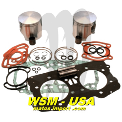 WSM. USA . Platinum Kit plungers, Sea-Doo 951, Standard 87.91mm