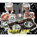 Kit pistons platinum Seadoo GTX DI / LRV DI /RX DI / XP DI (Cote +1mm)