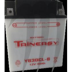 Batterie TRIENERGY tout modèle SEA-DOO 4 Temps